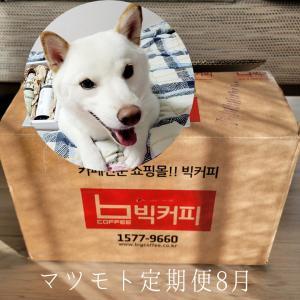 「韓国の新作がいっぱい届いた」8月のマツモト定期便