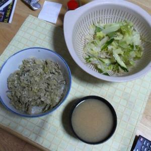 引き続き…キャベツの柳川風丼