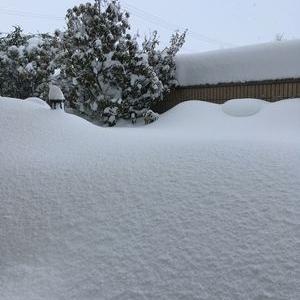2月の大雪・北陸豪雪 その2