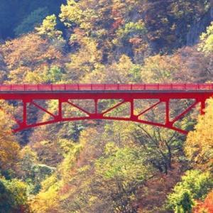 信州・高山村の松川渓谷の紅葉へ・・・・・・!