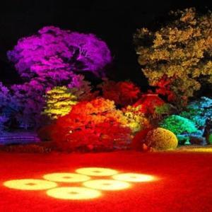 武家屋敷の庭園・ライトアップ……!