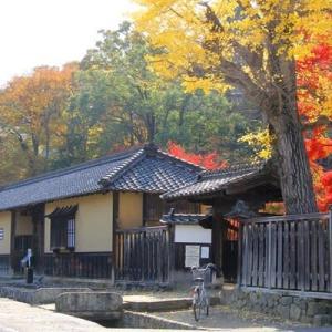信州・松代 武家屋敷の紅葉も、おつなもんですヨ・・・・・・!