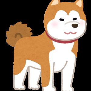 ⚠️拡散希望です⚠️(秋田犬の毒殺事件)