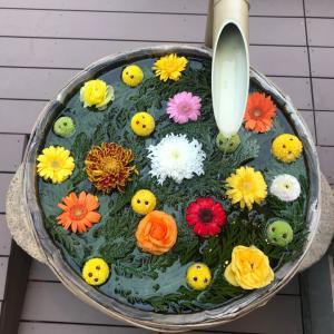 富士山温泉 別墅然然① 川の畔でお抹茶