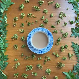 山椒ミルクティー?山椒の実、山椒の葉の佃煮