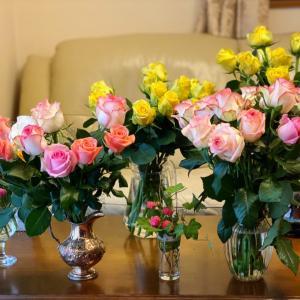 ルバーブでマフィン作り バラの香りに包まれて