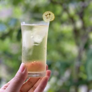 沖縄から貴重なギフト♪カレーリーフ、月桃、シークヮーサー、さんぴん茶