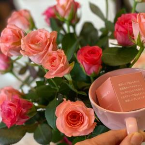本日はキャラメルティーwithピンクのバラ