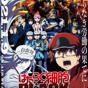 【海外の反応】TVアニメ『はたらく細胞BLACK』の新キービジュアル公開!「このアニメに関して、アニメへの反応よりも視聴者たちの反応が楽しみだ」