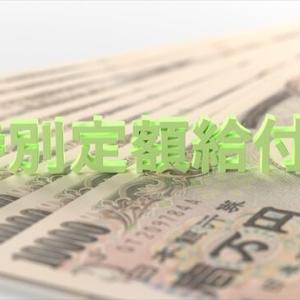 特別定額給付金10万円の使い道は?