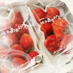 イチゴ大好き♡