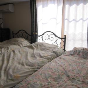 本棚とカラーボックスで作ったベッドの続き。ダニの死骸が怖くてひたすら洗濯。