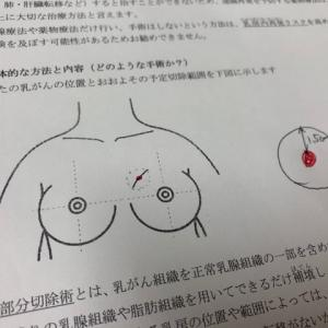 乳ガン記録 正しい書類
