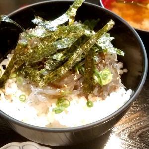 湯浅のおろし生姜のタレで頂く生しらす丼 和歌山県有田郡湯浅町湯浅 かどや食堂