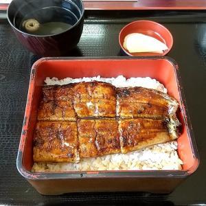 紀南でトップクラスの鰻の名店 和歌山県上富田町市ノ瀬 鰻料理 川よし