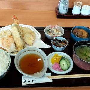 和食料理店の日替り定食(天ぷら) 和歌山市太田 和食よこい