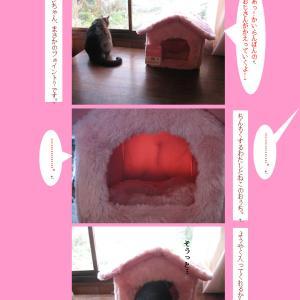 猫のおうちを作ろうね。(2)