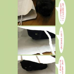 紙袋と四匹の猫たち(2)
