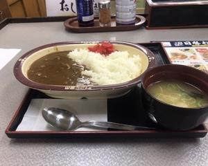 10月10日夕食(ファミリー食堂山田うどん食堂 かかしカレー)