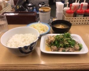 12月15日夕食(松屋 ネギたっぷりネギ塩チキン定食)