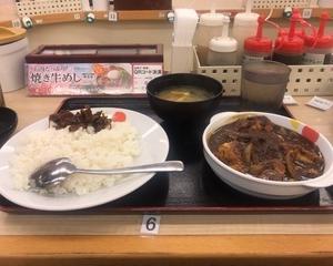 4月7日夕食(松屋 ごろごろ煮込みチキンカレー)