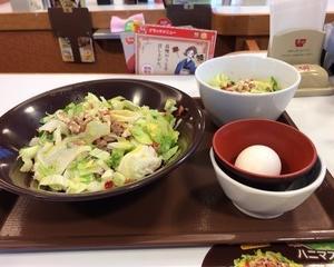 すき家  ハニマスレタス牛丼・ハニマスレタスサラダ