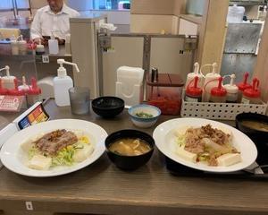 【店舗限定】松屋 ロカボ牛定豆腐サラダ・ロカボ牛皿豆腐サラダ・山形だし(単品)