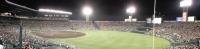 プロ野球観戦に行きました。