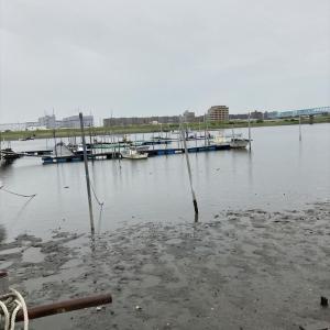 ハゼ釣り 2021-5 江戸川マルヤ