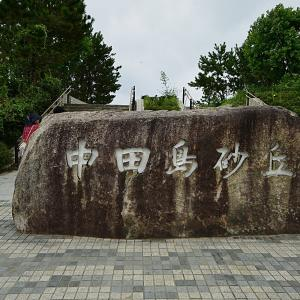 浜名湖 中田砂丘とうなぎパイ工場と浜松餃子!