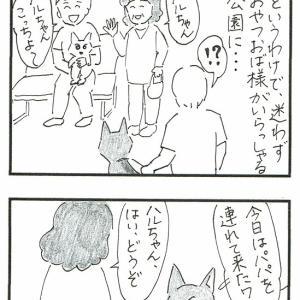 犬主体・・・