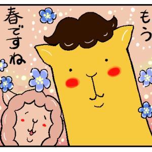 お花の定期便♪