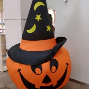 かぼちゃ・・(^-^;