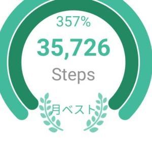 小旅行。25km歩いた。