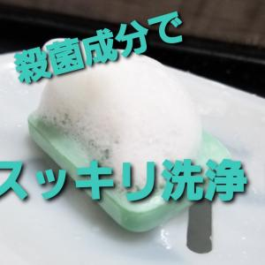 気になる雑菌、汗臭に!薬用ピロエース石鹸