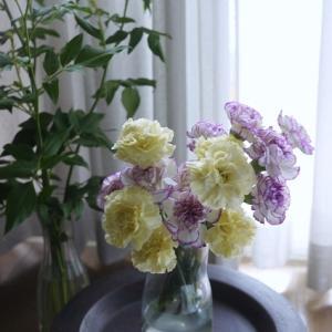 カーネーションの花瓶活けとオアシスアレンジ