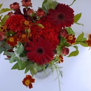 秋の赤い花をよりナチュラルに☆ガーデンアレンジ