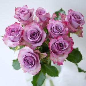 寒い日も☆切り花を長く楽しむための方法