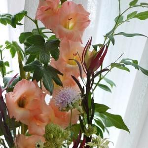 花の定期便で良さを再確認⭐︎グラジオラス