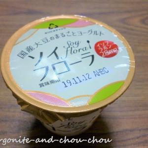 【ベジタリアン】さっき食べた国産大豆のヨーグルト
