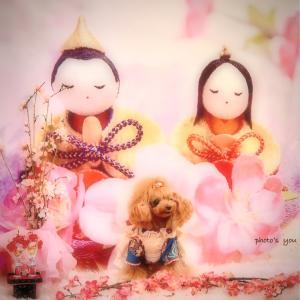 bebe&coco ⸜(* ॑꒳ ॑*  )⸝⋆*③ 1日目  姫路城から【ぱんでぶーび】さんへ