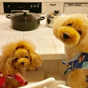 bebe&coco  (。 >艸<)  ちょっと ズレてやしませんか?