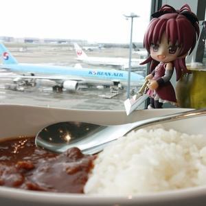 羽田ANAラウンジでオリジナルカレー食うかい?