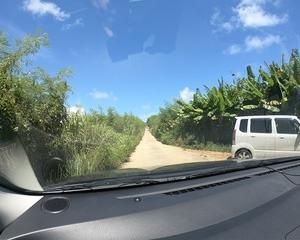 木々を抜けた先は……長間浜!宮古島旅行3日目(3)