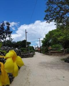 夏休み八重山旅行3日目午後。竹富島サイクリング。