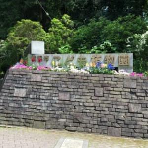 神奈中バスGW10日間フリーパスの旅 9-2(里山ガーデン)