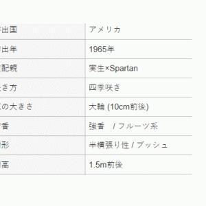 オープンガーデンG20・・・バラたち  5