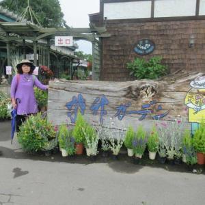 紫竹ガーデン・・・2