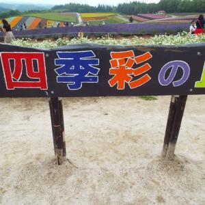 四季彩の丘・・・5