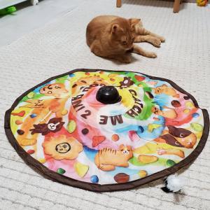 保護54日目★動くおもちゃ